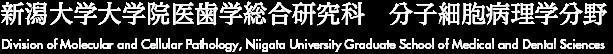 新潟大学大学院医歯学総合研究科 分子細胞病理学分野